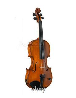 BARCUS-BERRY PROFESSIONAL LEGENDARY ACOUSTIC ELECTRIC VIOLIN with CASE BB100-E